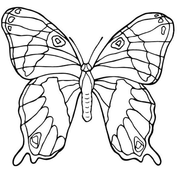 Butterfly Printable Coloring Pages Color On Pages Coloring Pages For Kids