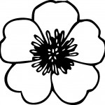 flower-coloring-pages-9.jpg