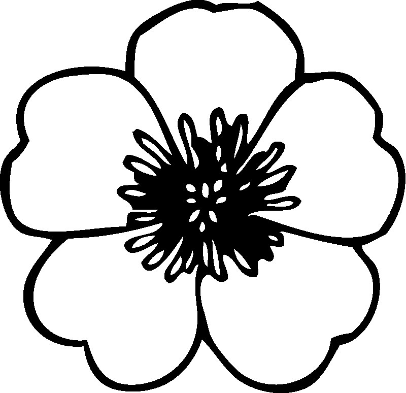 Awesome Flower Coloring Pages 9