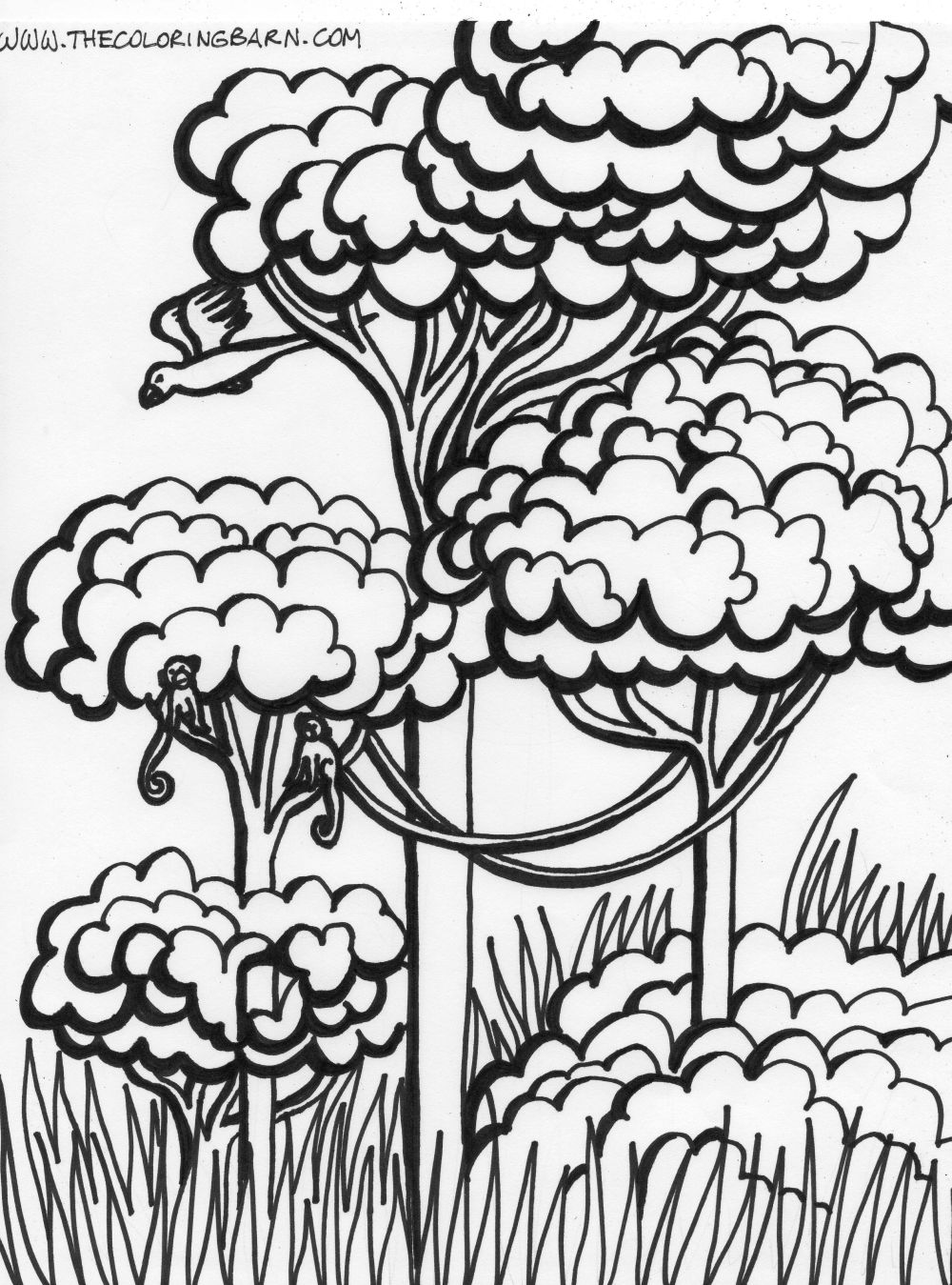Coloring Pages Rainforest Plants Coloring Pages jungle plants coloring pages images free download pages