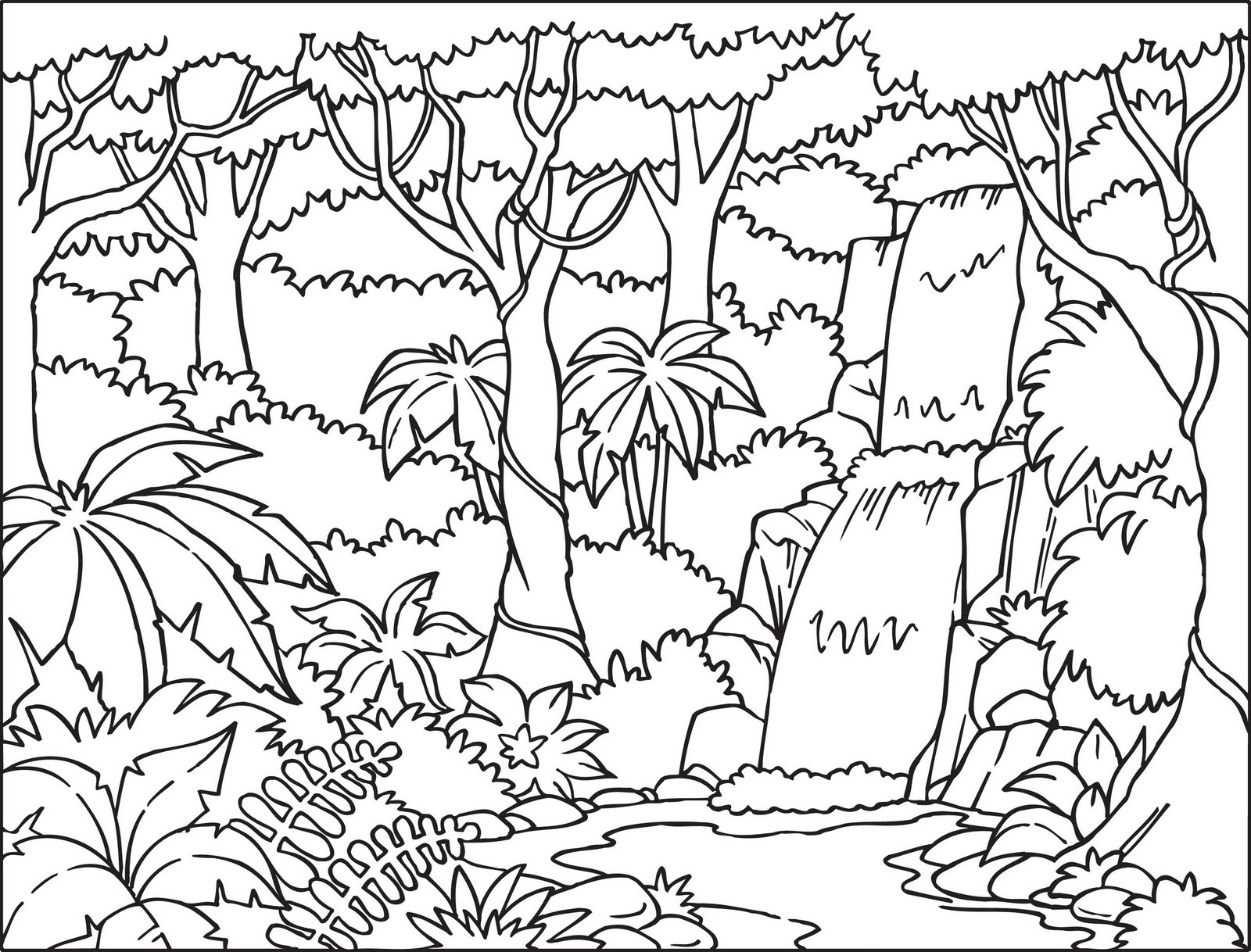 tropical coloring pages - tropical rainforest coloring pages color on pages