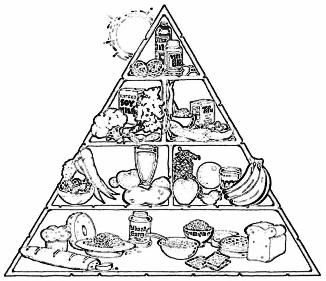 food-pyramid-1